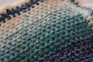 Blue Teal FadeDSC_0006